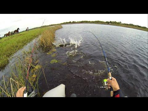 Рыбалка на щуку в Ирландии: секреты и советы. Pike fishing in Ireland: tips & tricks.
