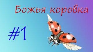 Божья коровка(Божьи коровки - ярко окрашенные насекомые, живущие группами на растениях, пораженных тлей, которая составля..., 2016-07-18T09:18:00.000Z)