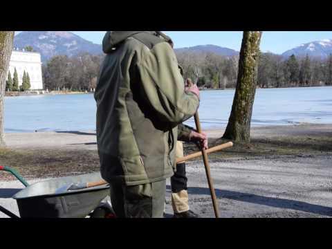 HLWM Annahof Salzburg: The Decision