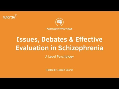 Issues, Debates and Effective Evaluation in Schizophrenia