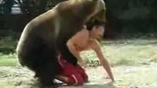 homem vs urso
