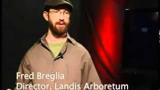 Impact - Barbara Brabetz interviews Fred Breglia