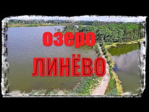 Озеро ЛИНЁВО, Рубежное. Обзорчик водоёма