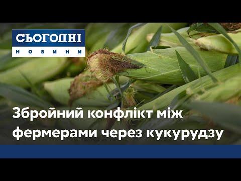 Війна за кукурудзу: