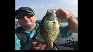 Personal Best Crappie 10 Min after Losing Giant Largemouth