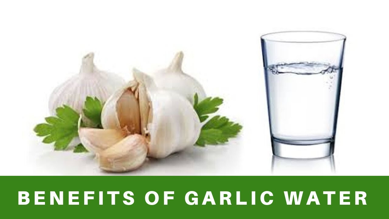 benefits of drinking garlic water, your health will greatly improve.