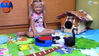 Кошки Игрушки и Сюрпризы для Котенка Барсика Видео для детей Play with Cat Video for Children
