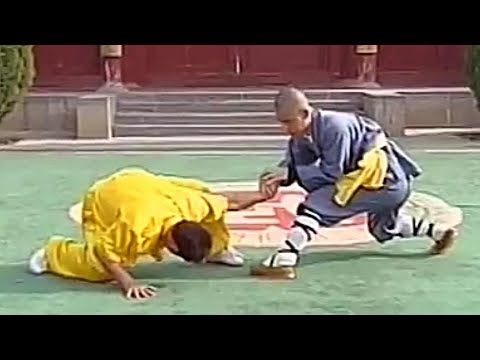 Shaolin kung fu combat: 32 catches (qin na)
