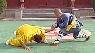 Shaolin kung fu combat: 32 catches (qin na)