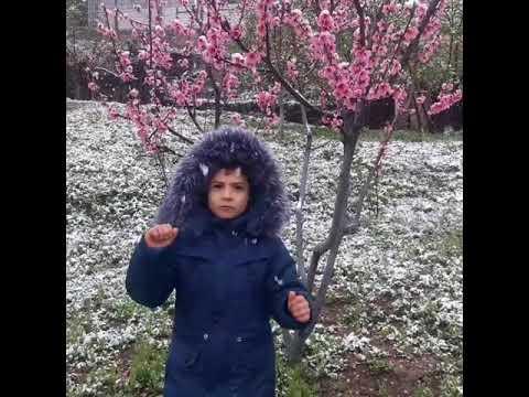 Изображение предпросмотра прочтения – РегадинГаджиев читает произведение «Весна( Зима не даром злится!)» Ф.И.Тютчева