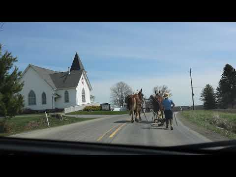 Amish Territory In New Wilmington, PA
