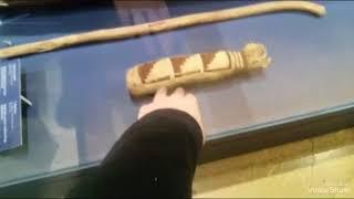 Музей изобразительных искусств имени А. С.Пушкина. Мумия и Кошка мумия.👍🙂👍🙂