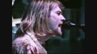 Nirvana's cover of the Vaselines' SON OF A GUN written by Frances M...