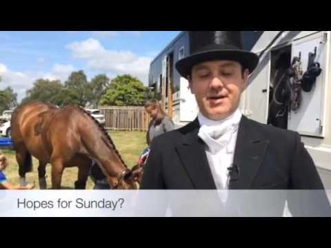 Supreme Riding Horse Champion