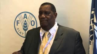 H.E. Roger Clarke (Jamaica)