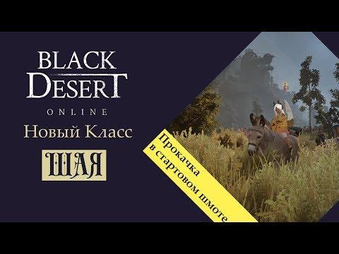Black Desert Новый класс Шая кач с нуля в старт шмоте