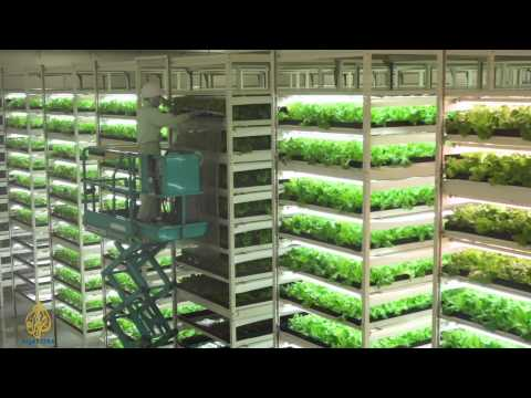 Earthrise - Ancient Canals; Future Farms; Cryocoral Conserva