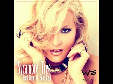 Tami Chynn Ft. Sean Paul - Sycamore Tree [Lyrics] - YouTube