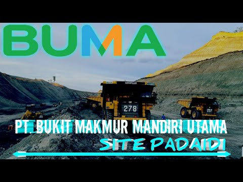 BUMA Coal Mining Contractor Indonesia | Site Padaidi
