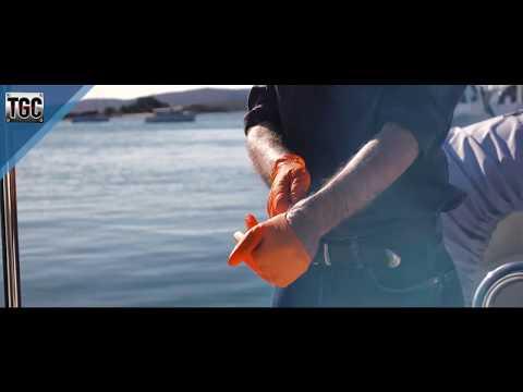 TGC Orange Glove - Hivis Safety Disposable Nitrile Gloves