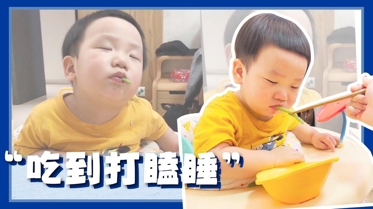 【波能日常#23】太可愛了~吃飯吃到打瞌睡!(1Y2M15D)