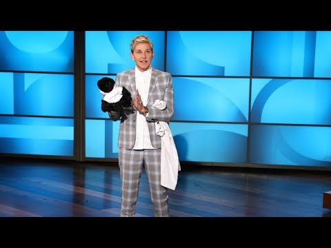 It's Ellen's Gorillathon Sale!