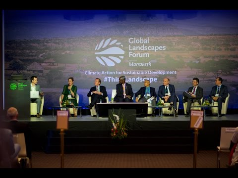 Unlocking private finance in forests, sustainable land use and restoration - GLF 2016 Marrakesh