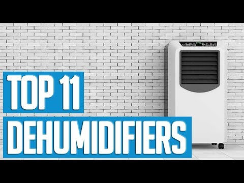 Best Dehumidifiers 2019 | TOP 11 Dehumidifier 🌟
