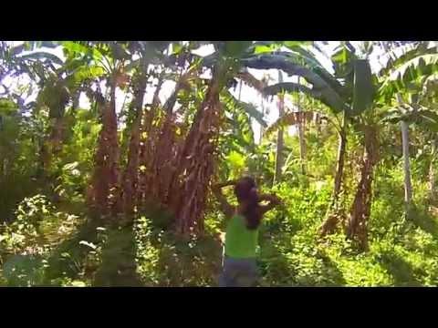 Best Guides Ever - Tablas Island - Philippines
