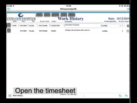 FMG How to open your work history