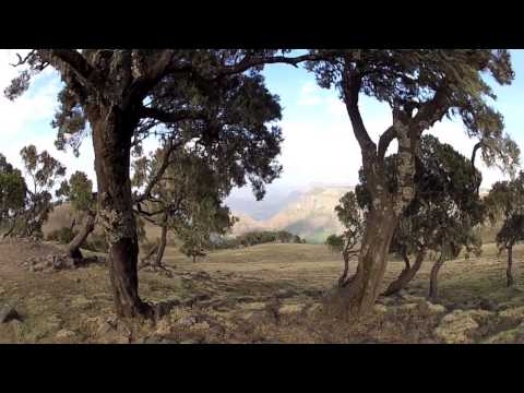 GoPro HD: Seven Days in Ethiopia