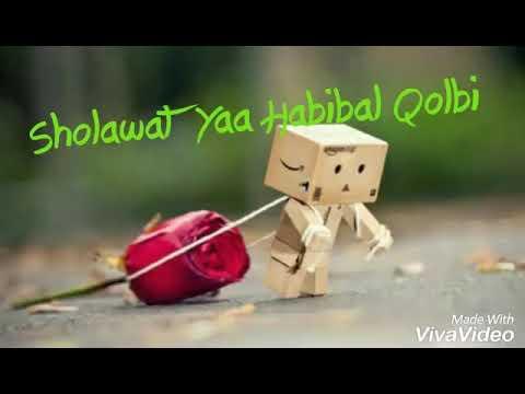 Yaa Habibal Qolbi (versi danbo)