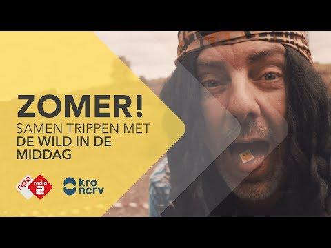 De Zomer is AAN! - De Wild In De Middag   NPO Radio 2