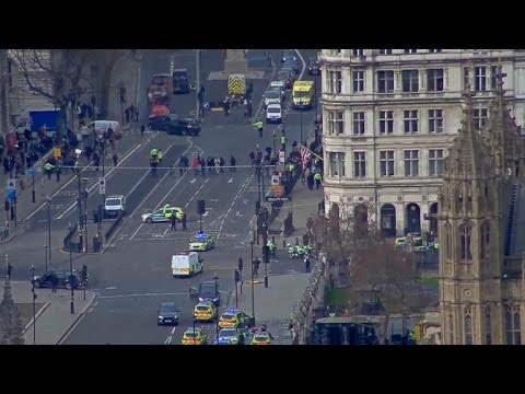 Stabbing, shots fired at British Parliament