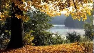 Краски осени в Яренске