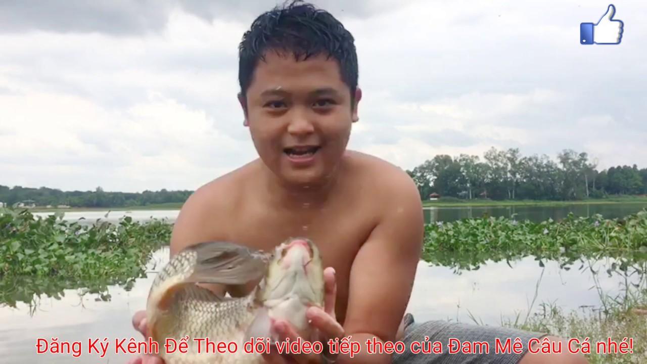 Câu cá chép,bằng mồi ngũ cốc! || Đam Mê Câu Cá