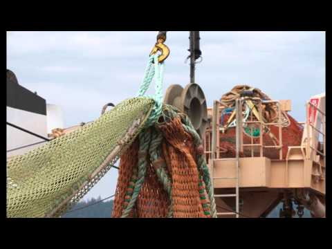PSF Salish Sea Marine Survival Program Slideshow