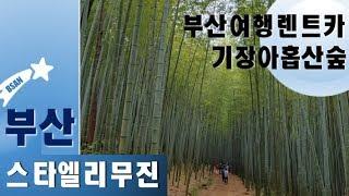 부산여행렌트카 기장아홉산숲 부산투어