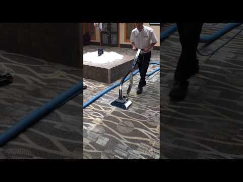 Ultra-Clean Zipper Super Spinner Carpet Cleaning Demo