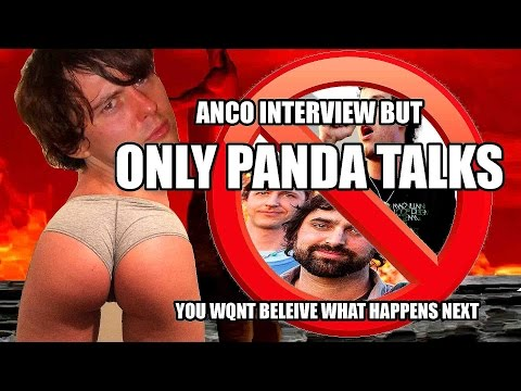 ANIMAL COLLECTIVE INTERVIEW BUT ONLY PANDA TALKS (CRAZY!!!!)