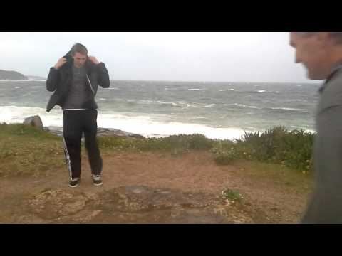 Windy Sydney Weather