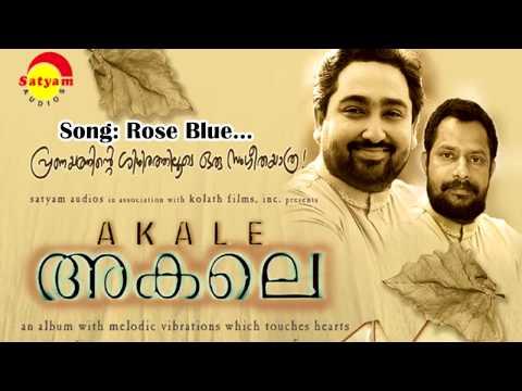 Nee Januvariyil Viriyumo Lyrics ( Rose Blue Rose Lyrics ) - Akale Malayalam Movie Songs Lyrics