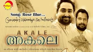 Rose Blue - Akale
