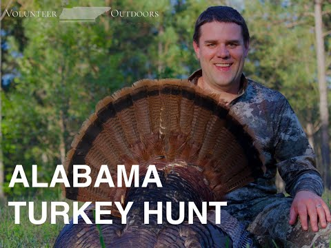 ALABAMA GOBBLER DOWN! - Spring Turkey Hunt | March 2020