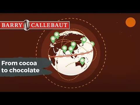 From cocoa to chocolate  the long journey of a great tasting product!