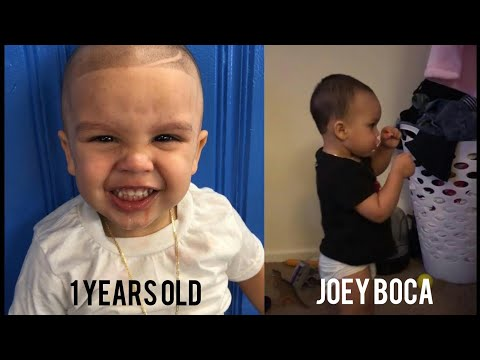 The Youngest Talented Boxer 2 Years old | Joey Boca