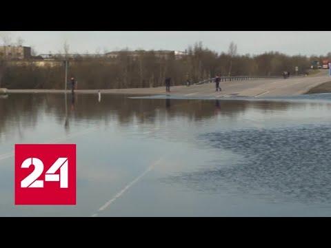 В Мурманске автодорога стала частью русла реки - Россия 24