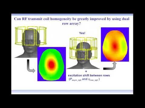 BioEM Workshop 2016: Toward individualized specific absorption rates