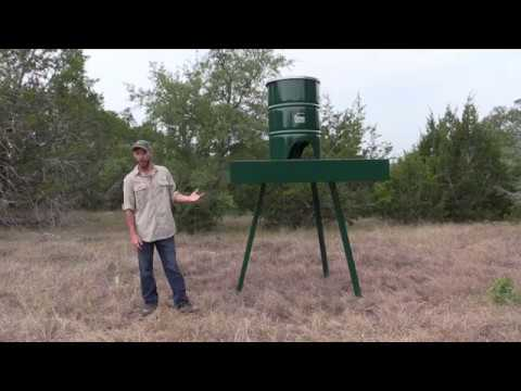Platform wild bird feeder