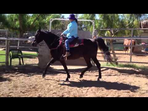 Jean Graham riding NV